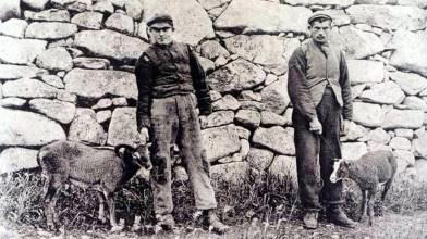 Old St Kilda images (22)