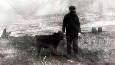 Old St Kilda images (23)