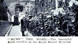 Floral Corridor Royal Cornhill, Dec 1930
