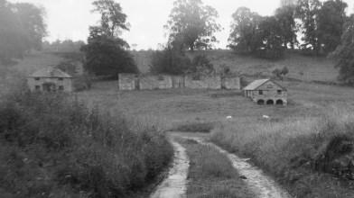 Lynedoch, near Methven 15 June 2017 (6)
