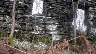 Kilneuair, South Loch Awe side - Monday 11 February 2019 (28)