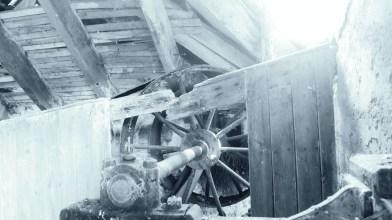 Corston Mill - May 2020 (11)