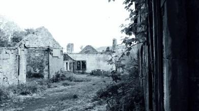 Corston Mill - May 2020 (7)