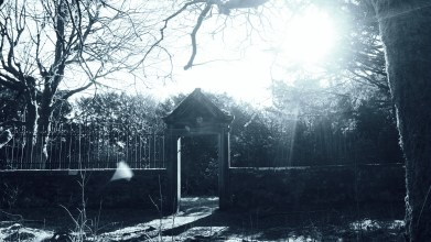 Peter Gordon visits Gartshore gardens - Monday 12 April 2021 (16)