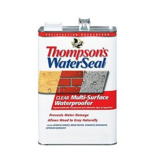 Sherwin-Williams Thompson's WaterSeal Clear Multi-Surface Waterproofer