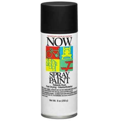 Krylon Now Spray Paint