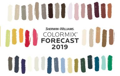 Colormix Прогноз 2019