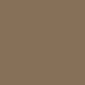 SW 6145 Thatch Brown