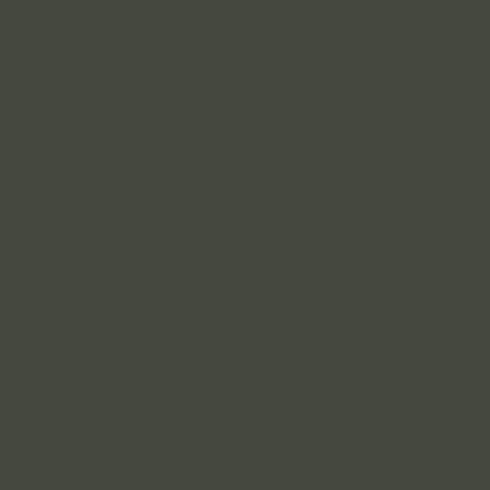 SW 6209 Ripe Olive
