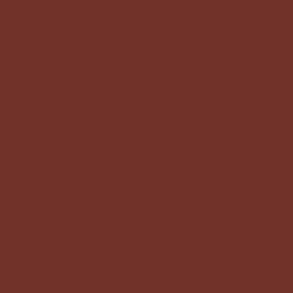 SW 7593 Rustic Red