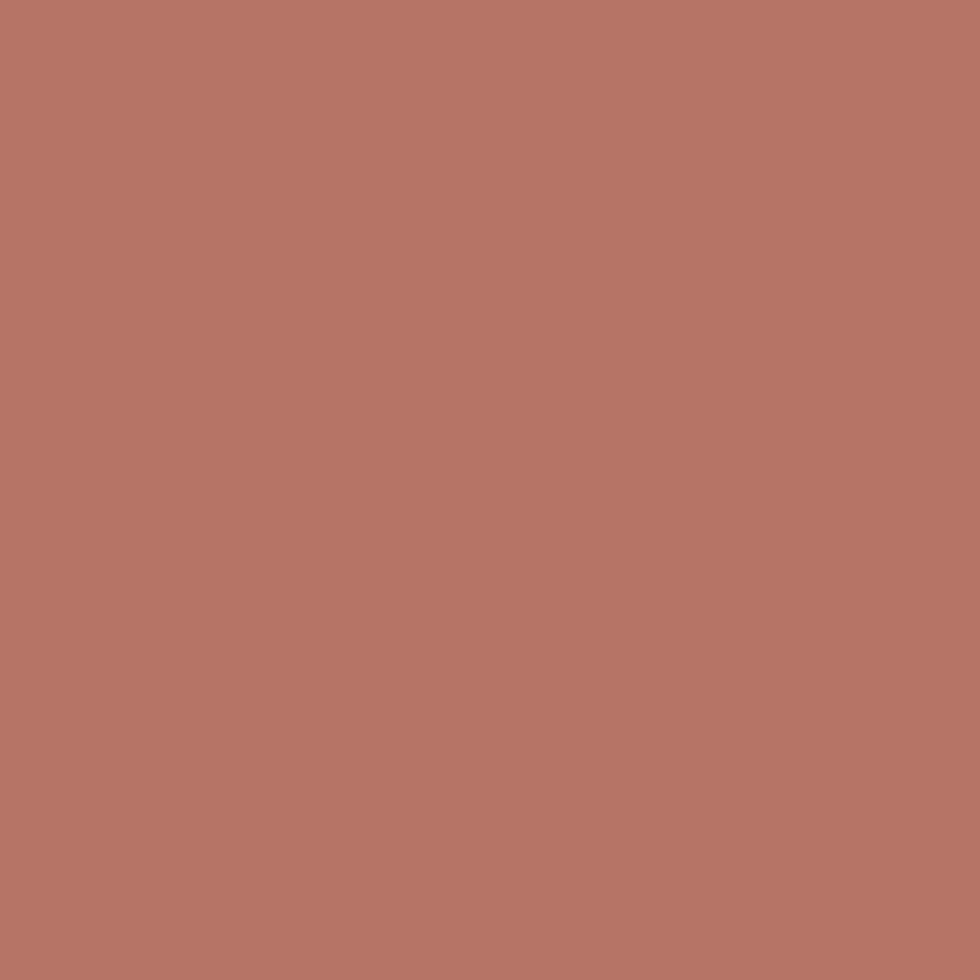SW 9006 Rojo Dust