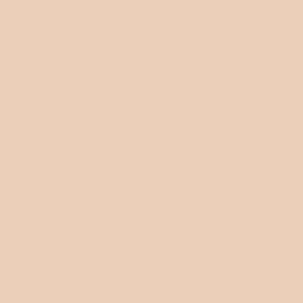 SW 6344 Peach Fuzz
