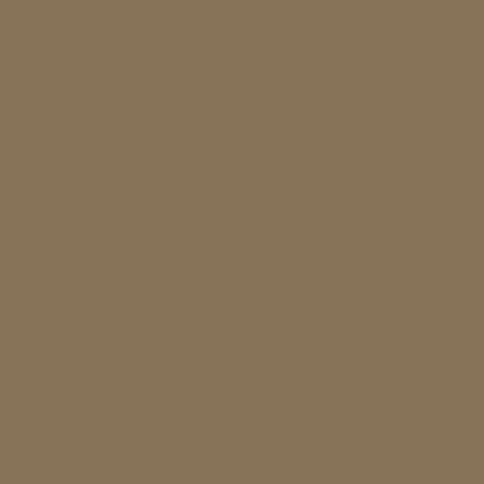 SW 9124 Verde Marrón