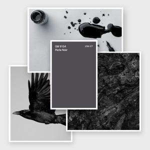 SW 9154 Perle Noir