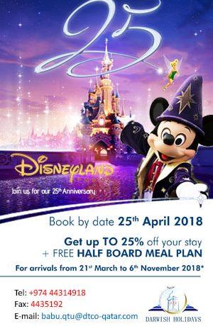 Disney-HP-side-banner-300-px-X-490-px-1