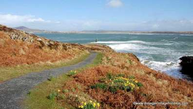 Portnablagh Holiday Home - coastal path at Ards Forest Park