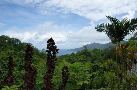 отдых на Сейшельских островах, остров Маэ - «Сейшельский Морн», Вокруг разбросаны многочисленные холмы