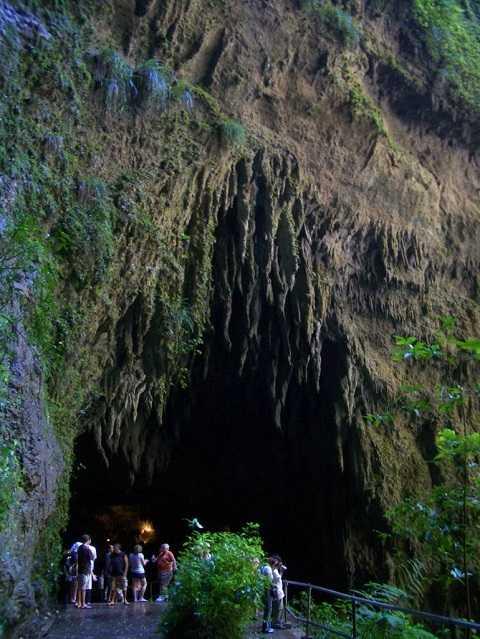 Отдых на Карибских островах, Пуэрто-Рико - Пещерный парк Рио Камай