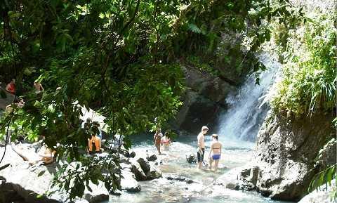 Отдых на Карибских островах, Пуэрто-Рико - тропический лес Эль-Юнке