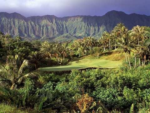 Отдых на Гавайских островах - многообразная флора на Гавайях