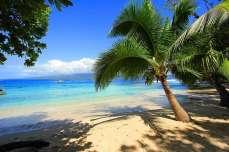 Отдых на острове Фиджи - Тенистые, песчаные пляжи Фиджи