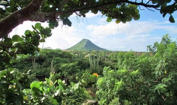 Отдых на острове Аруба - Арубы - национальный парк Арикок