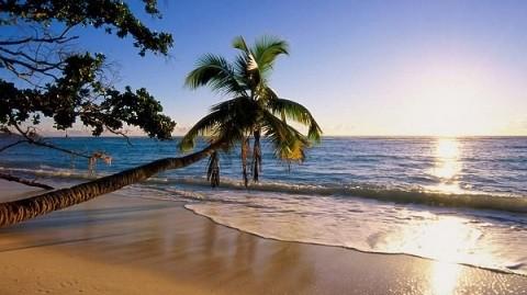 отдых на Сейшельских островах - пляжи острова Силуэт