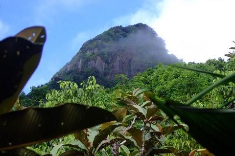 отдых на Сейшельских островах, остров Маэ - «Сейшельский Морн»