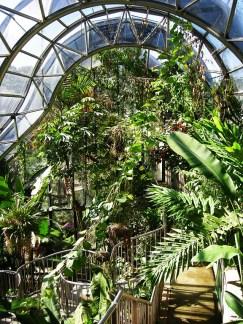 royal_botanic_gardens_sydney_03