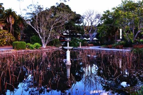 sydney_botanical_gardens-1