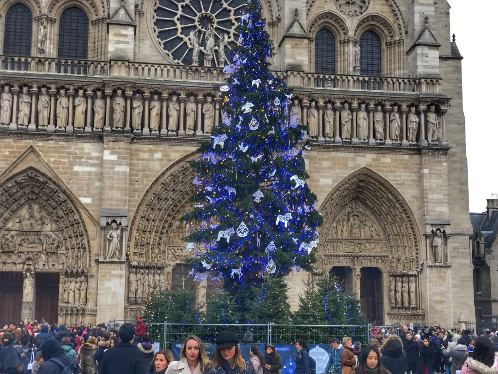 A Christmas tree stands before Notre Dame. Christmas 2018