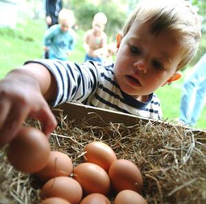 Luxury child-friendly holiday farm, Cornwall