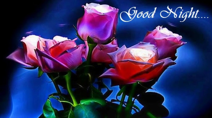 Awesome Good Night Pictures, Images With Rose Flowers