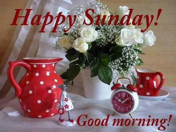 Beautiful Happy Sunday Good Morning Pictures With Rose