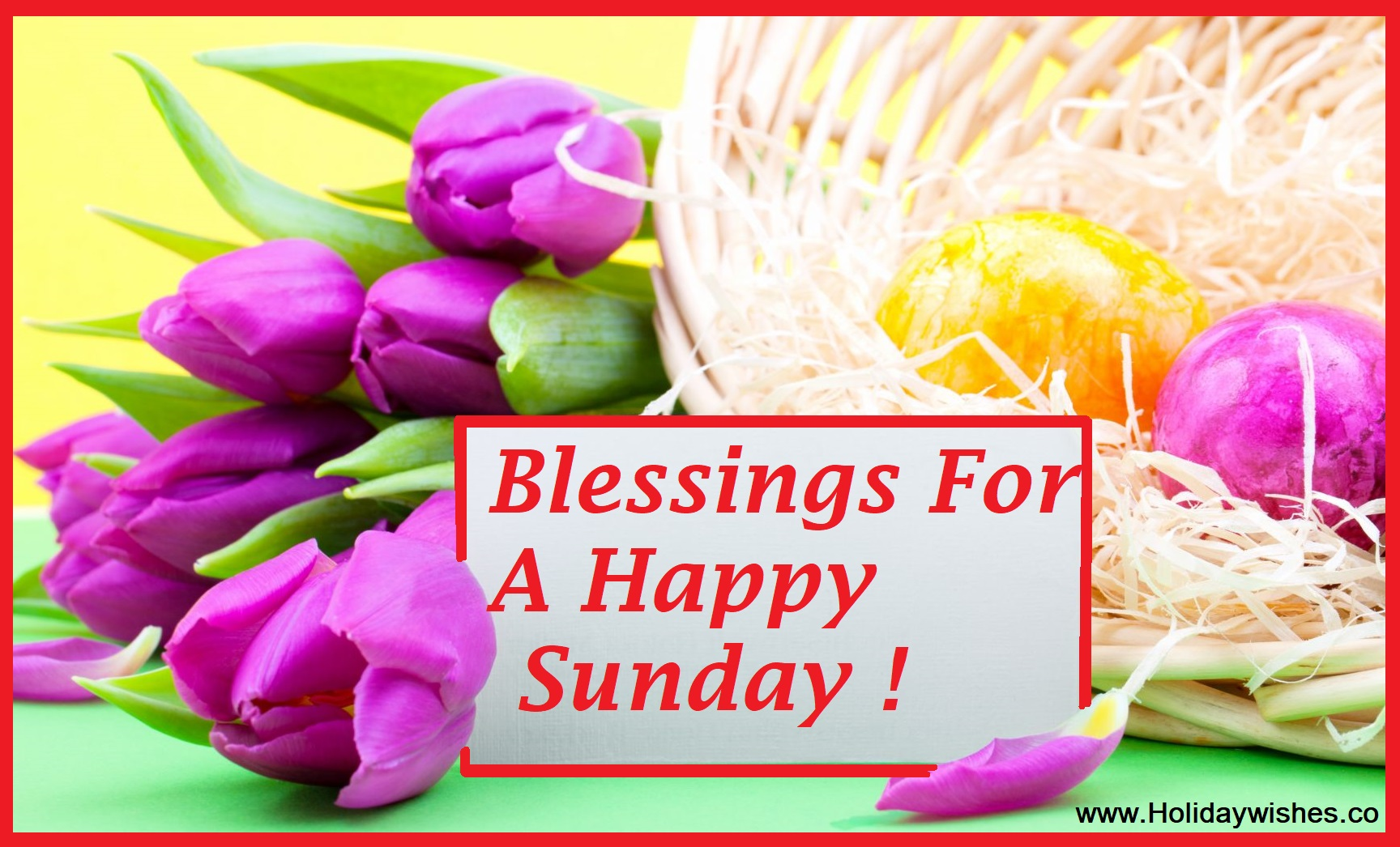Beautiful happy sunday good morning pictures with rose flowers beautiful happy sunday good morning pictures with rose flowers holiday wishes izmirmasajfo