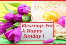beautiful Happy Sunday Picture