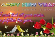 Happy New Year Speech and Essay 2019, Happy New year 2019