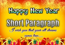 Short Paragraph on How to Celebrated New Year (250-300 Words)