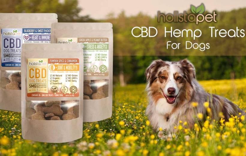 Holistapet-cbd-hemp-treats-for-dogs