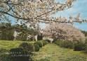 Kiryu Friary - Retreat House #2