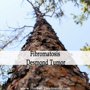 Herbal Medicine for Aggressive Fibromatosis - Desmond Tumor Recovery & Prevention