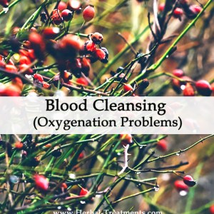 Herbal Medicine for Blood Cleansing - Oxygenation Problems