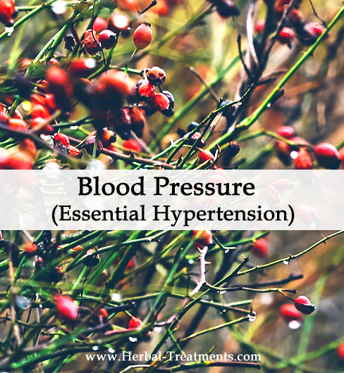 Herbal Medicine for Blood Pressure (Essential Hypertension)