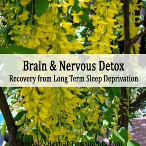 Herbal Treatment for Brain and Nervous Toxin Removal