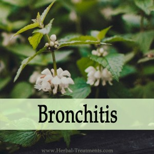 Herbal Medicine for Bronchitis