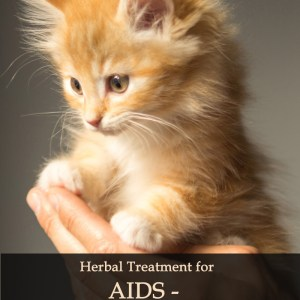 Herbal Treatment of AIDS - Immunodeficiency Virus (FIV) in Cats