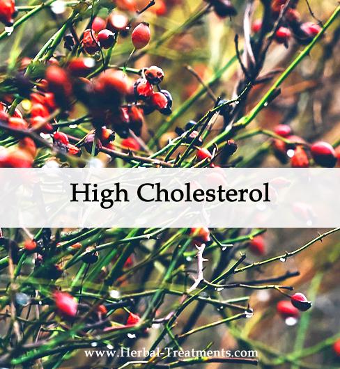 Herbal Medicine for High Cholesterol