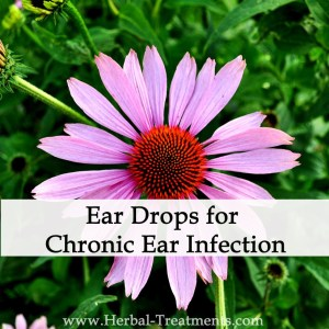Herbal Medicine - Ear Drops for Chronic Ear Infection