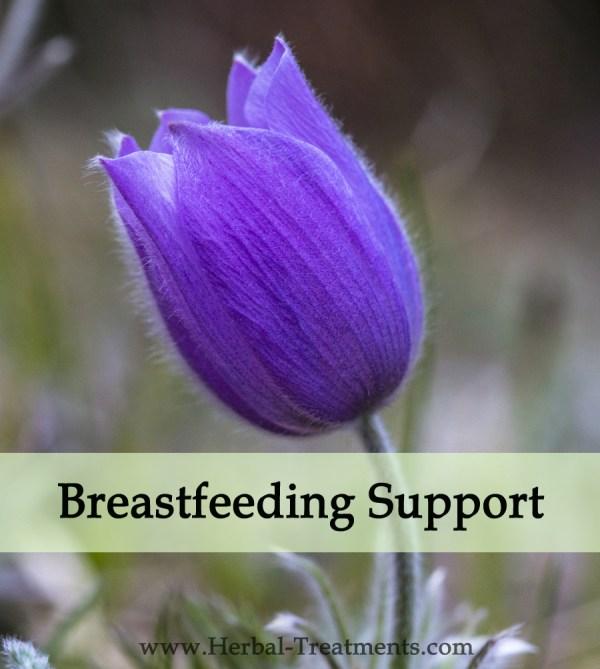 Herbal Medicine for Breastfeeding Difficulty