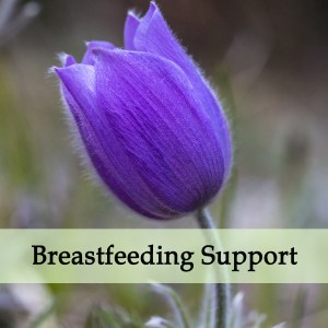 Herbal Medicine for Breastfeeding Difficulty